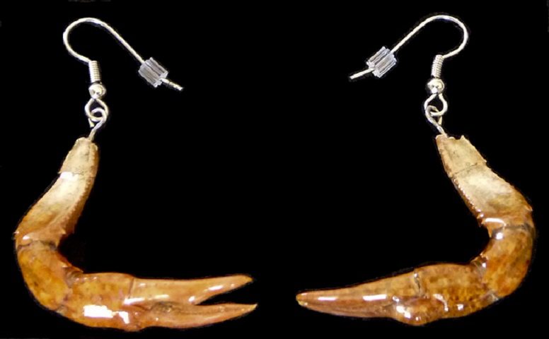 bayou style authentic crawfish claw earrings