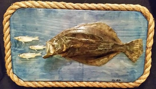 Taxidermied Flounder and bait fish wall art  piece perfect for the coastal home
