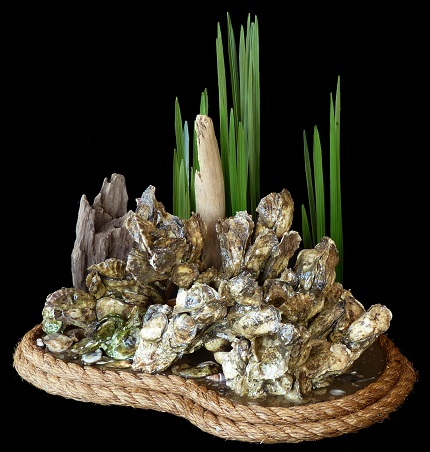 beautiful unique real oyster table piece home decor