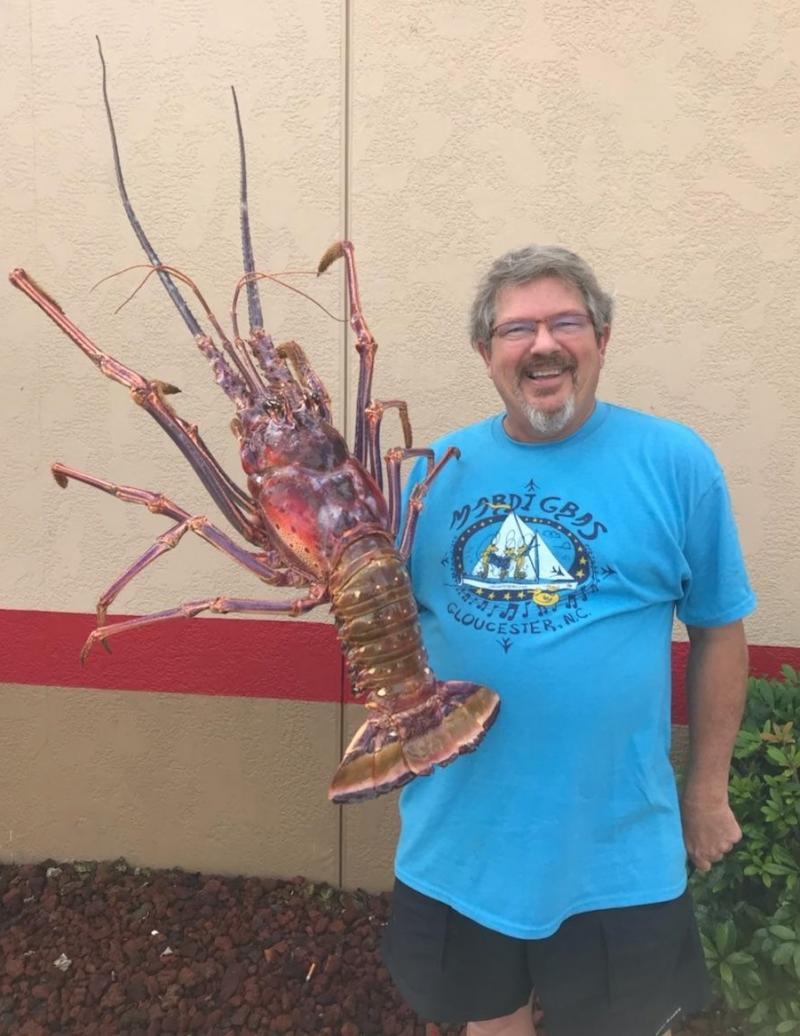 custom taxidermy of giant spiny lobster